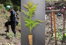 高性能林業機械の普及