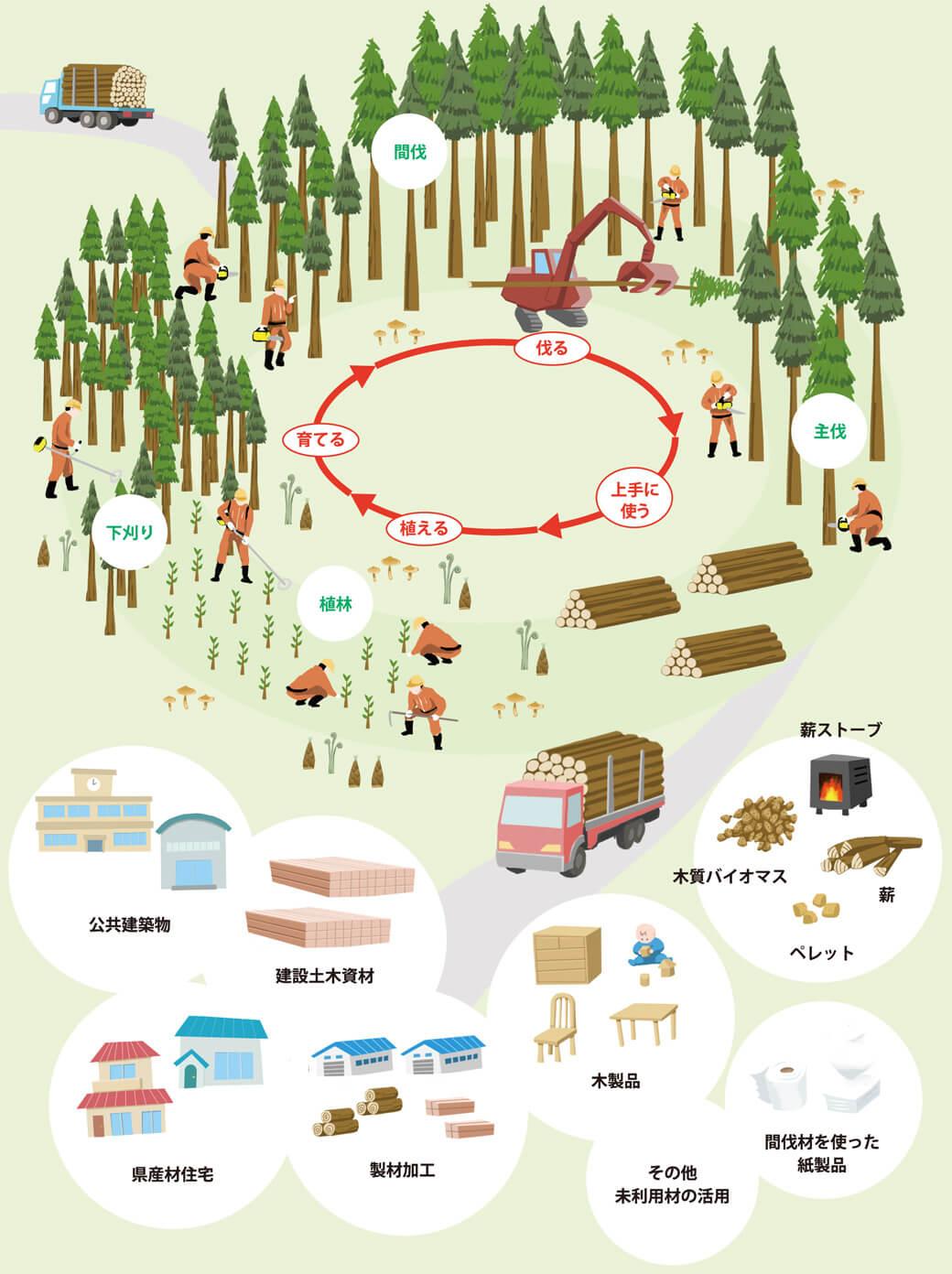 林業のしごと・木材利用