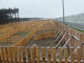 海岸防災林の防風柵